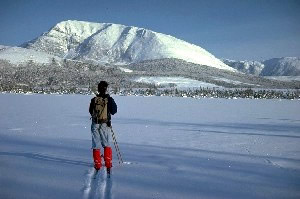 Skier-and-Gros-Morne